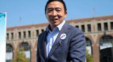 Andrew Yang online poker